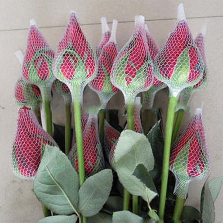 Floral Packaging Nets